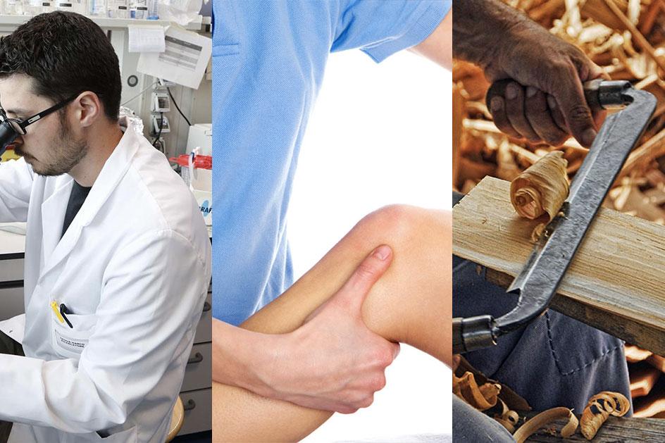 Chi è il Fisioterapista? e cosa fa?